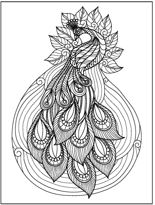 A Birds Paradise Adult Coloring Book